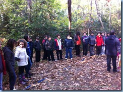 Games in our Forest_Comenius_Delasalle-2